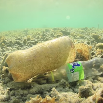 Half-decayed plastic bottle covered in sand at the bottom of a lake or river
